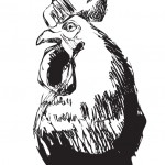 Joanna's Rooster, metal drawing, dimensions variable, 2008