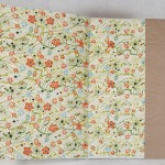 end sheets, plain brown wrapper